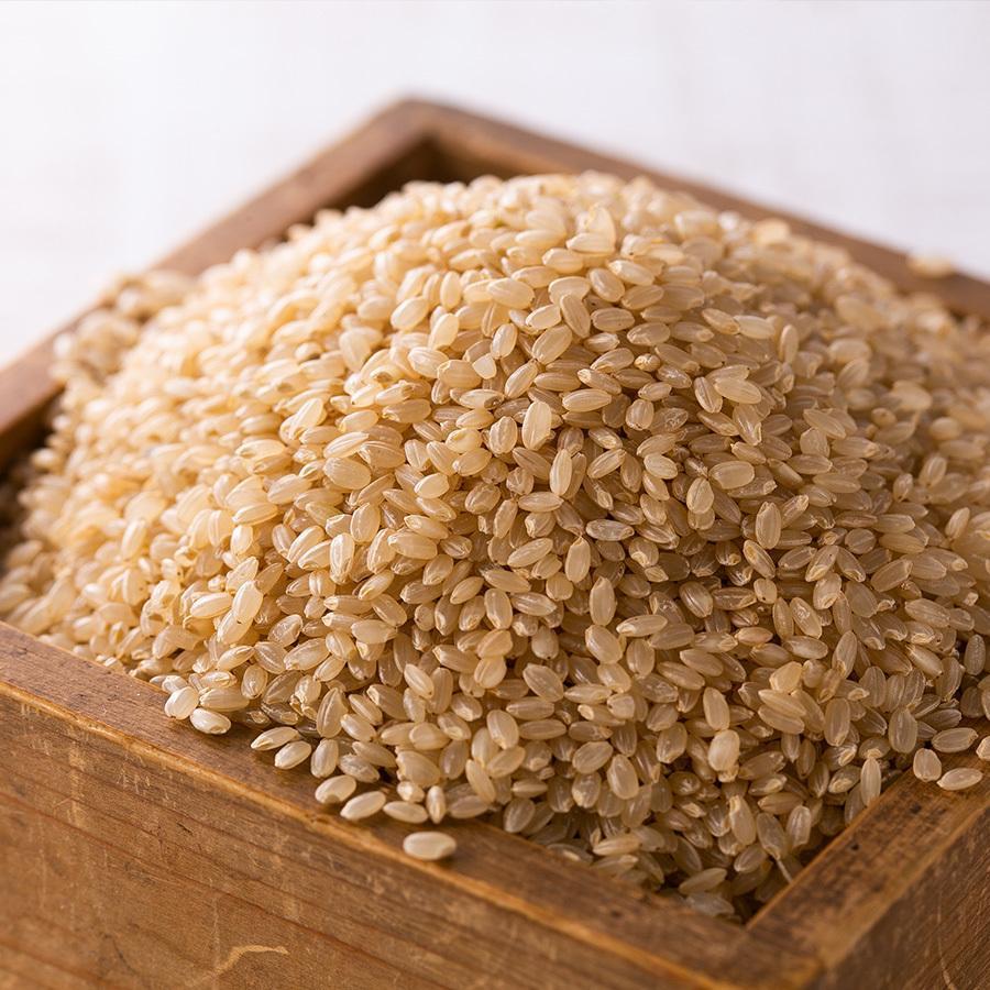 玄米 令和3年産新米 秋田県産 あきたこまち 特別栽培プレミアム 5kg 農薬8割減 化学肥料9割減 慣行栽培比 農家直送|hanatsukafarm|04
