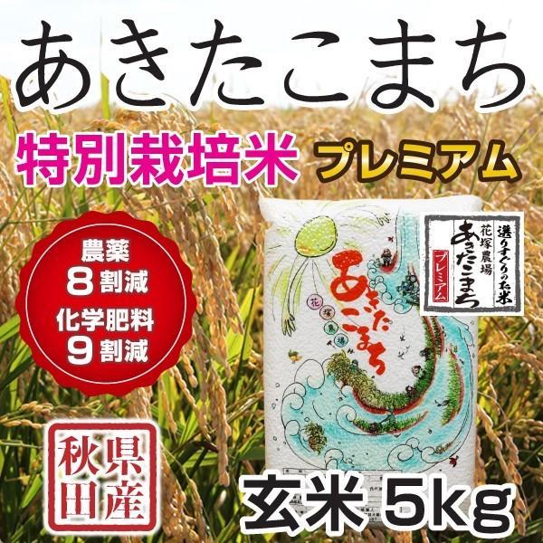 玄米 令和3年産新米 秋田県産 あきたこまち 特別栽培プレミアム 5kg 農薬8割減 化学肥料9割減 慣行栽培比 農家直送|hanatsukafarm|07