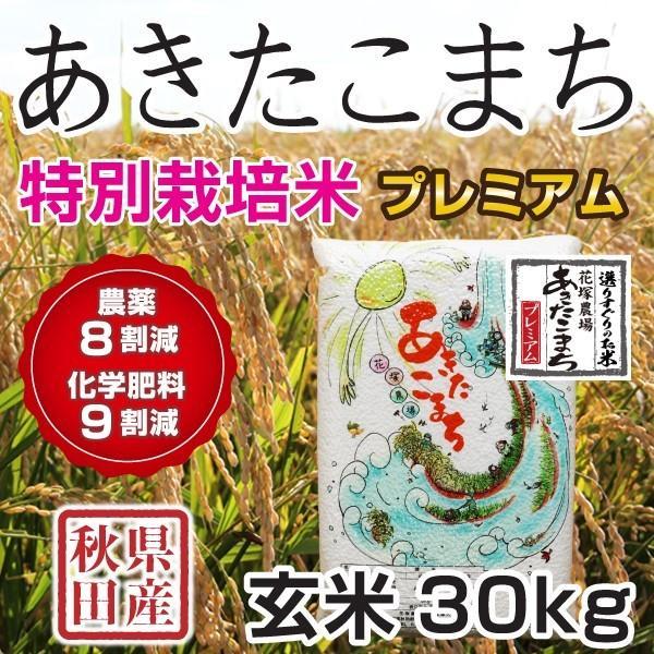 玄米 令和3年産新米 秋田県産 あきたこまち 特別栽培プレミアム 30kg 農薬8割減 化学肥料9割減 慣行栽培比 農家直送|hanatsukafarm|08