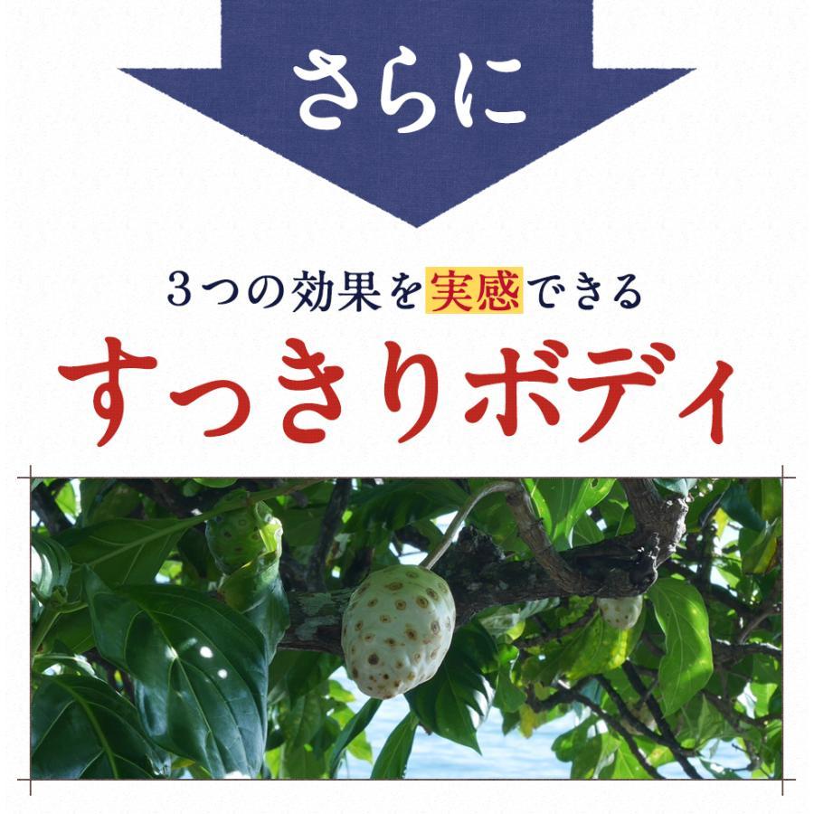 ハンズノニ サモア 半年熟成ノニジュース 900ml 2本セット|hands|13
