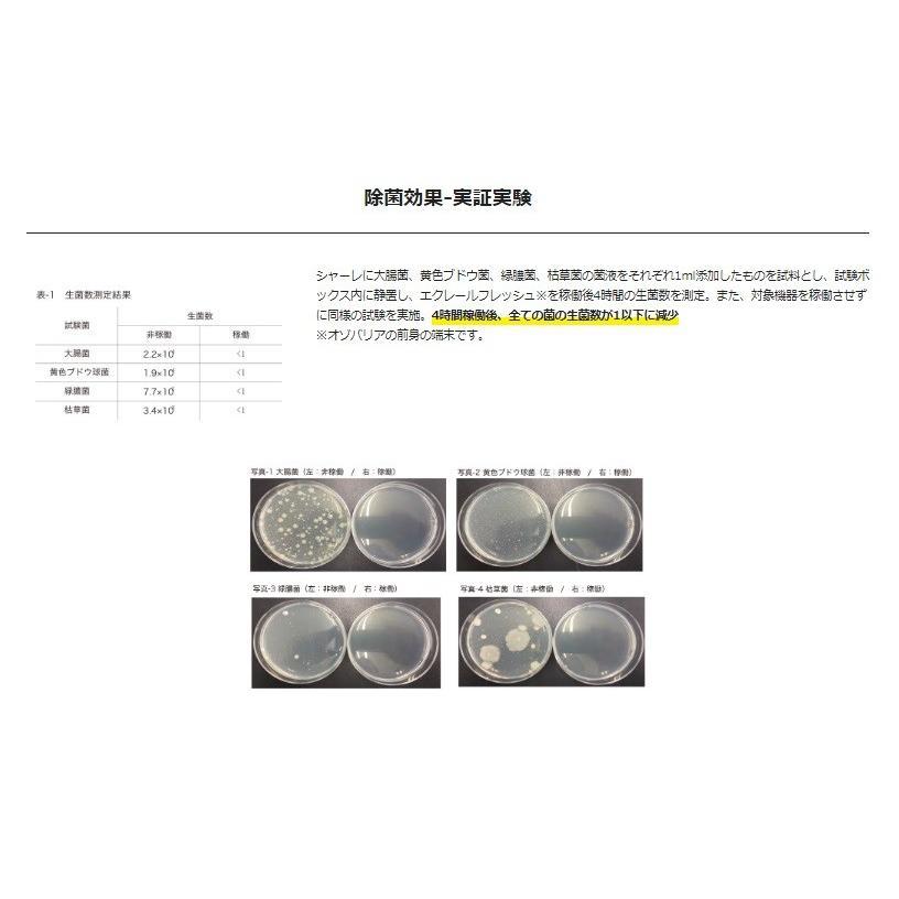 在庫あり ozobarrier オゾバリア モバイルタイプ 低濃度オゾン発生機 グレー/パール 除菌・花粉・脱臭・PM2.5 handskotera 09