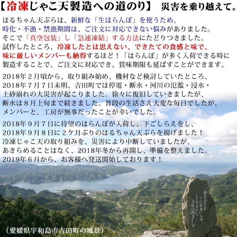 冷蔵はるちゃん天ぷら10枚(はらんぼじゃこ天)|hannouhangyo|12