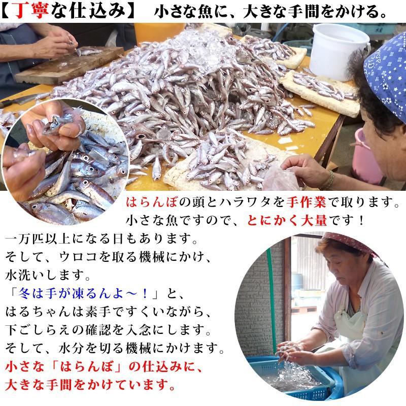冷蔵はるちゃん天ぷら10枚(はらんぼじゃこ天)|hannouhangyo|06