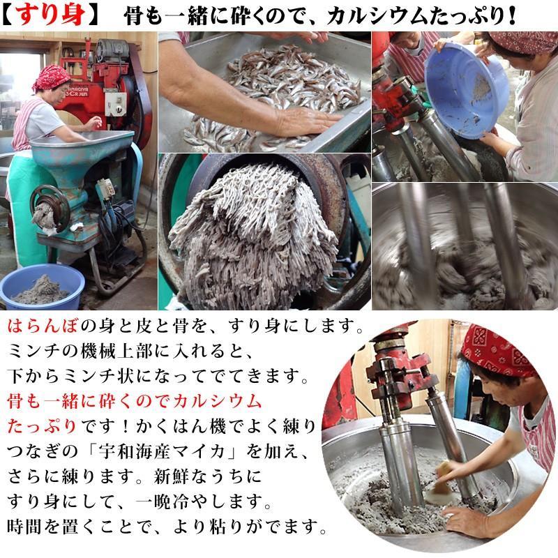 冷蔵はるちゃん天ぷら10枚(はらんぼじゃこ天)|hannouhangyo|07