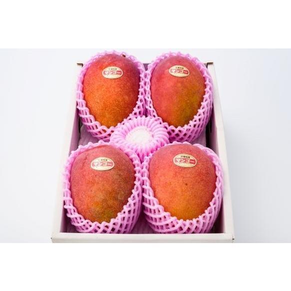 【贈答用】沖縄 マンゴ− マンゴーギフト 沖縄県産 アップルマンゴー【優】  2kg4〜6玉 沖縄マンゴ− ご注文日から7日以内に発送致します。|happ-mama