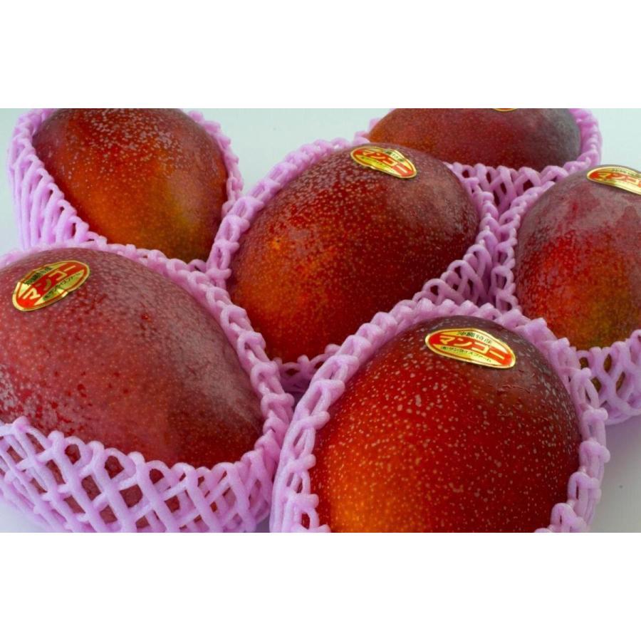 【贈答用】沖縄 マンゴ− マンゴーギフト 沖縄県産 アップルマンゴー【優】  2kg4〜6玉 沖縄マンゴ− ご注文日から7日以内に発送致します。|happ-mama|02
