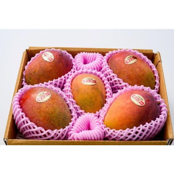 【ご家庭用】 沖縄県産 アップルマンゴー 2kg 4〜6玉  沖縄 マンゴー フル−ツ 沖縄マンゴ−  ご注文日から一週間以内に発送致します|happ-mama