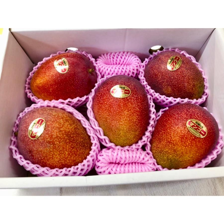 【ご家庭用】 沖縄県産 アップルマンゴー 2kg 4〜6玉  沖縄 マンゴー フル−ツ 沖縄マンゴ−  ご注文日から一週間以内に発送致します|happ-mama|02