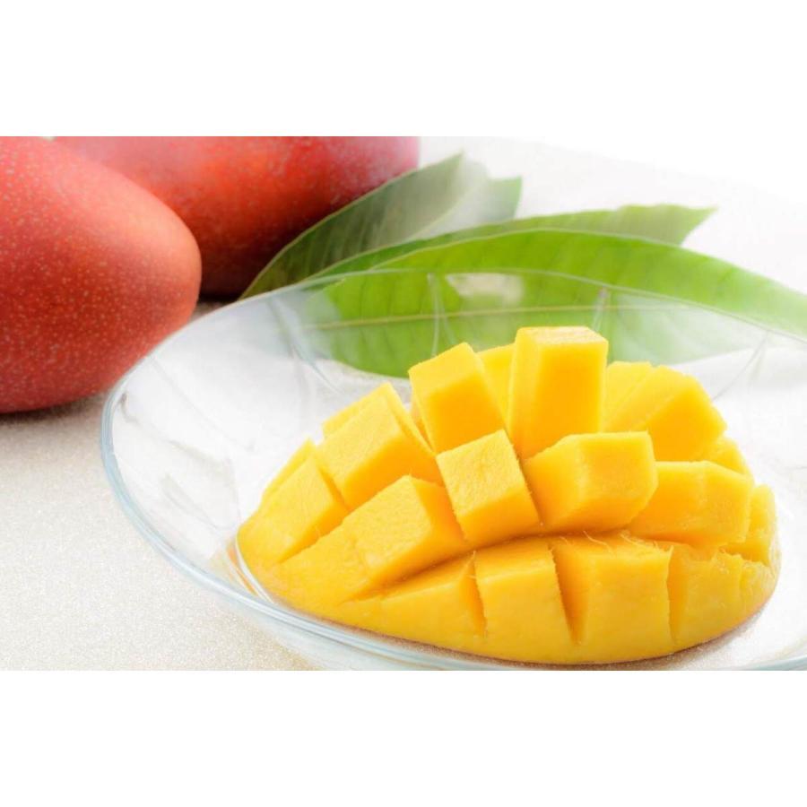 【ご家庭用】 沖縄県産 アップルマンゴー 2kg 4〜6玉  沖縄 マンゴー フル−ツ 沖縄マンゴ−  ご注文日から一週間以内に発送致します|happ-mama|08