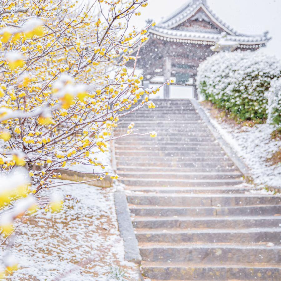 みとよの絶景カレンダー 2021 カレンダー 三豊市 父母ヶ浜 壁掛け happybath 07