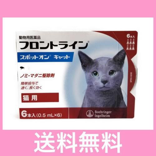 ON メール便 人気ショップが最安値挑戦 送料無料 割り引き 6本 フロントラインスポット 猫用