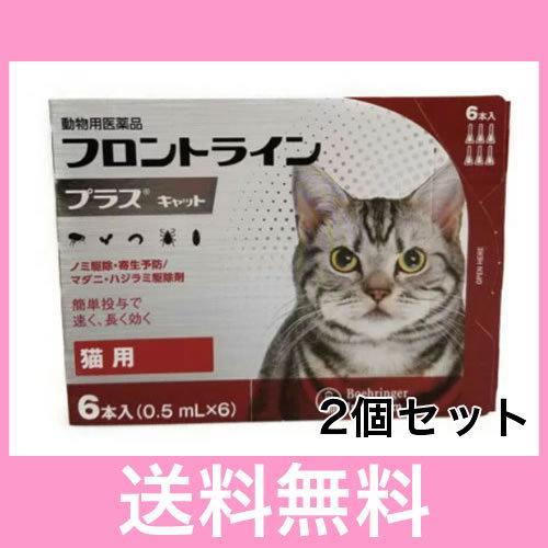 高額売筋 メール便 送料無料 日本最大級の品揃え 猫用 フロントラインプラス 6本 2個セット