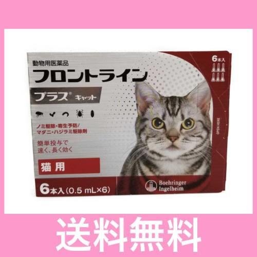 メール便 セール価格 送料無料 猫用 6本 フロントラインプラス 2020モデル