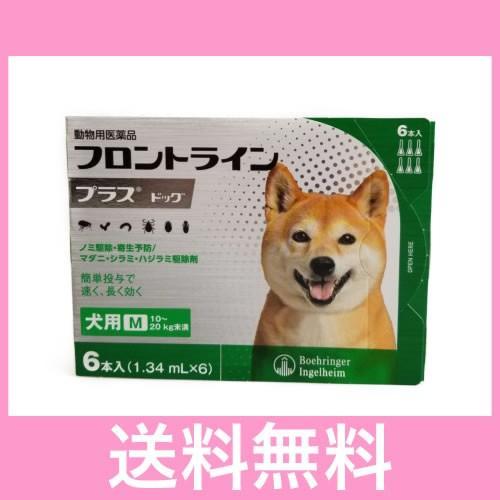 奉呈 メール便 人気ブランド 送料無料 犬用 フロントラインプラス 6本 M 10〜20kg未満