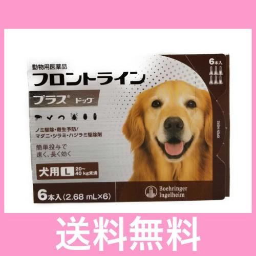 C 開店祝い メール便 送料無料 犬用 6本 20〜40kg未満 フロントラインプラス L 実物