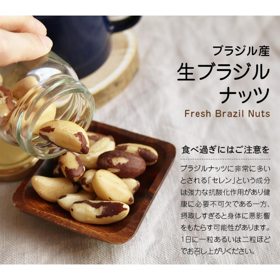 生ブラジルナッツ 55g スーパーフード 無塩 無添加 小分け ダイエットサポート 抗酸化物質セレン 一日一粒  ハッピーナッツカンパニー|happynutscompany|09