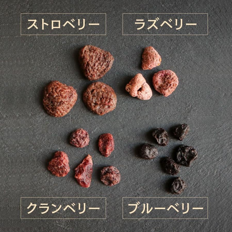 ベリーミックス 微糖 60g ドライフルーツ スーパーフード ビューテイーサポート ダイエットサポート ハッピーナッツカンパニー|happynutscompany|08