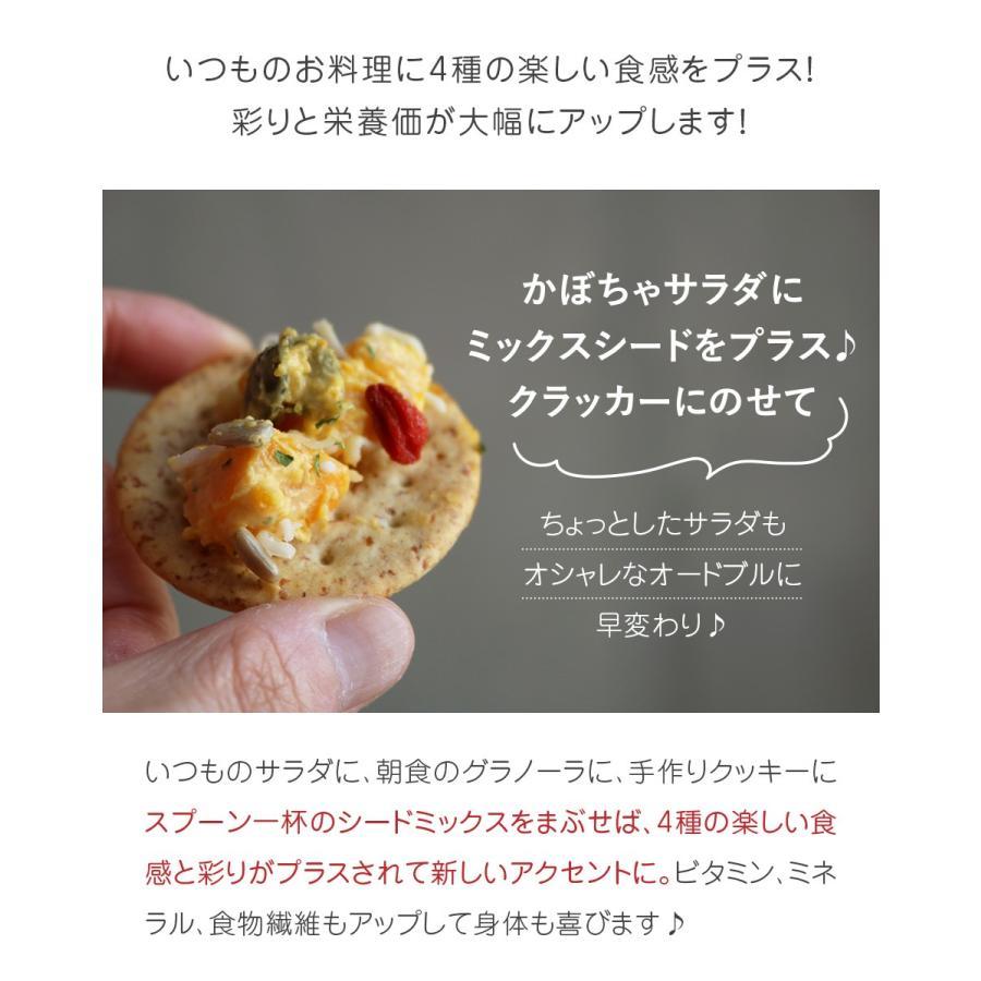 美健の実ミックス 無塩 60g 小分け クコの実 かぼちゃの種 ひまわりの種 松の実 4種類 お家ダイエットおやつ ハッピーナッツカンパニー happynutscompany 05