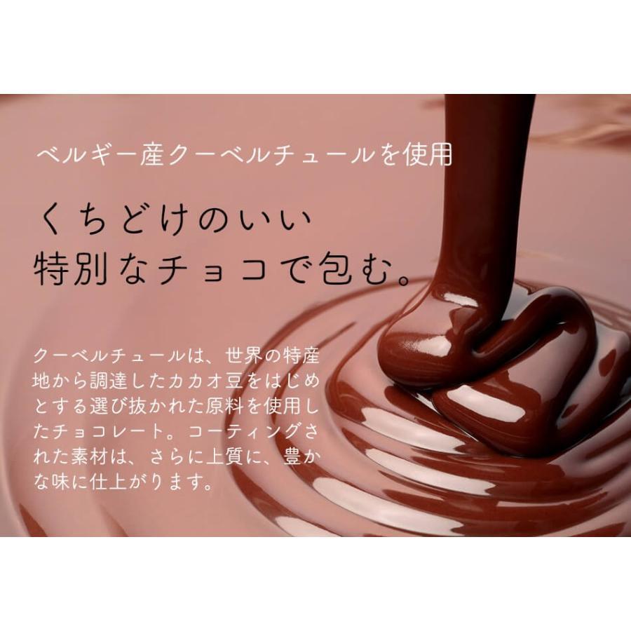 マカダミア ナッツ チョコ 70g コーヒーブレイクおやつ ベルギー産チョコレート使用 ハッピーナッツカンパニー バレンタインデー ホワイトデー happynutscompany 10