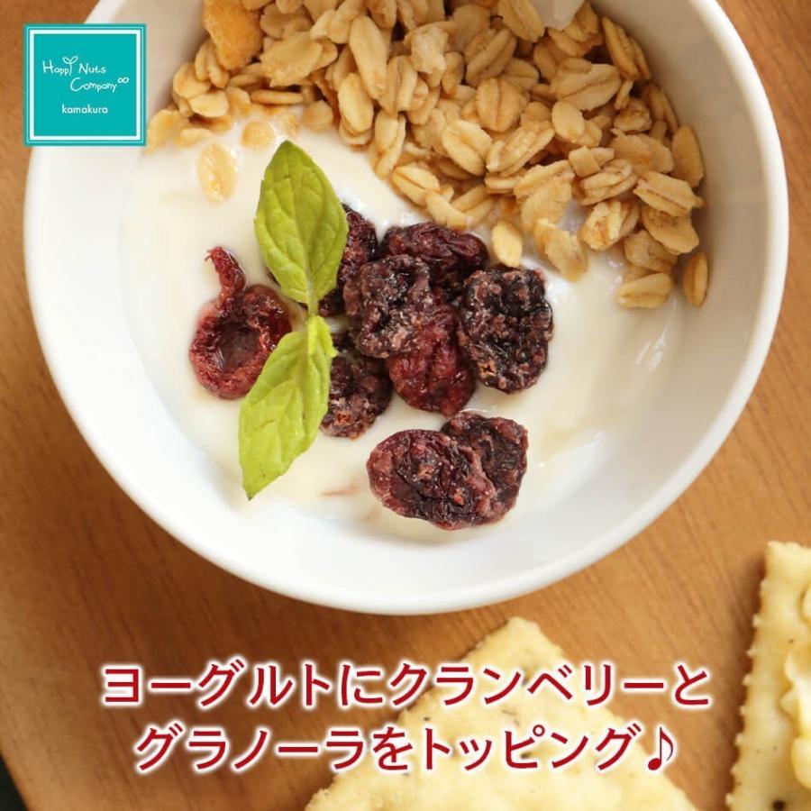 クランベリー微糖 150g カナダ産 ドライクランベリー 体サポート ダイエットサポートスーパーフード ハッピーナッツカンパニー|happynutscompany|04
