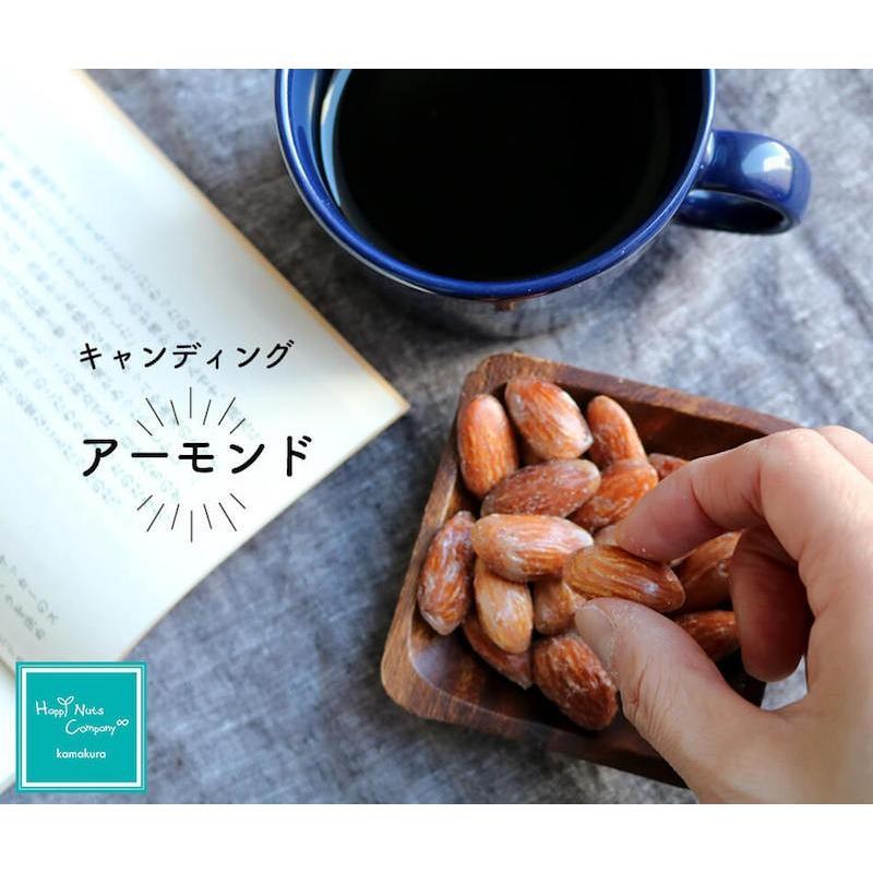 アーモンド キャンデイング 70g 体サポート ダイエットサポート ハッピーナッツカンパニー happynutscompany 14