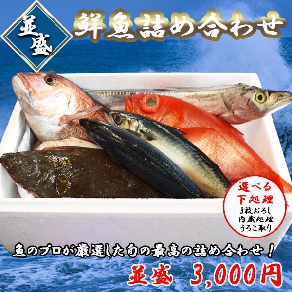 鮮魚詰め合わせ 日本未発売 産地直送 鮮度抜群 出群 おまかせ 並盛
