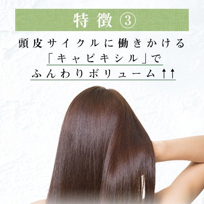 シャンプー haru 100%天然由来の「kurokamiスカルプ」。ノンシリコン&リンス・コンディショナー不要。ハリ・コシUP(400ml 約2ヶ月分)|haru-shop|07