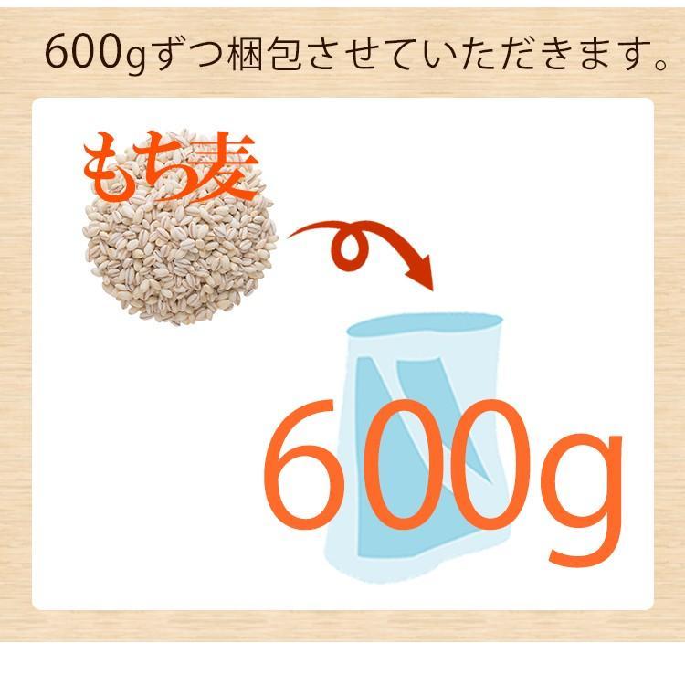 もち麦 たっぷり ダイエット 美容  もち麦 600g メール便 送料無料|hatasyou-ten|05