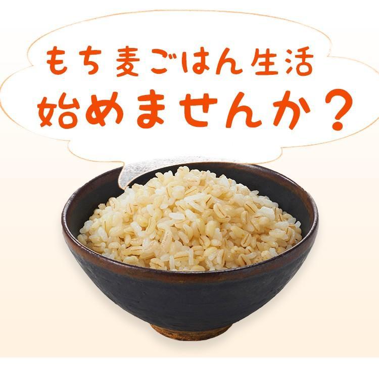もち麦 たっぷり ダイエット 美容  もち麦 600g メール便 送料無料|hatasyou-ten|06