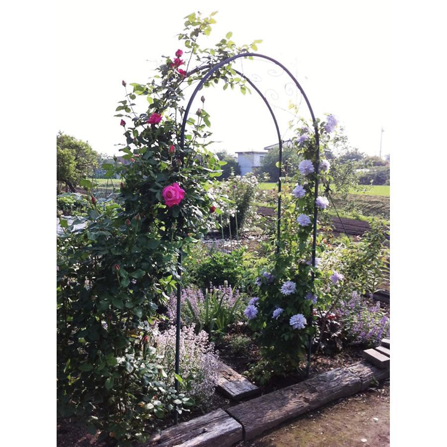 ガーデンアーチ R−N型