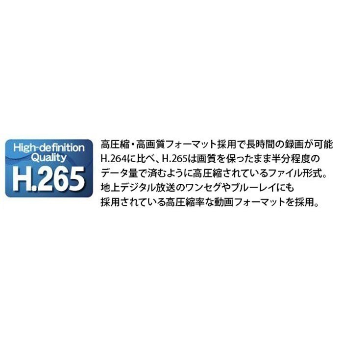 音声録画対応 防犯カメラ 800万画素 ドーム型 監視カメラ 遠隔監視可能 防犯録画機 NVR レコーダー IPカメラ HDC-4K800IPC06 WTW-PDRP4615EA2 WTW-NV404EP2|hdc|04