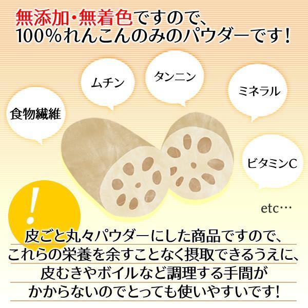 国産 れんこんパウダー100g 蓮根 レンコン 粉末 無添加 殺菌工程 送料無料 healthy-c 05
