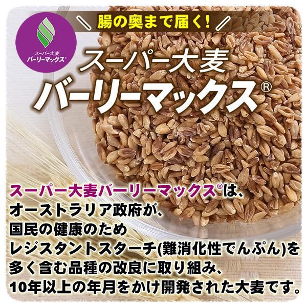 バーリーマックス 300g スーパー大麦 メール便 送料無料 セール特売品|healthy-c|04