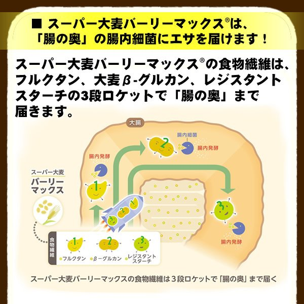 バーリーマックス 300g スーパー大麦 メール便 送料無料 セール特売品|healthy-c|06