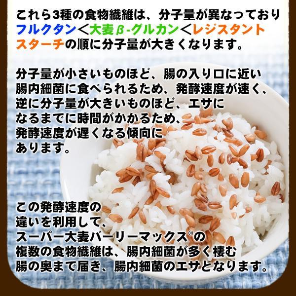 バーリーマックス 300g スーパー大麦 メール便 送料無料 セール特売品|healthy-c|07
