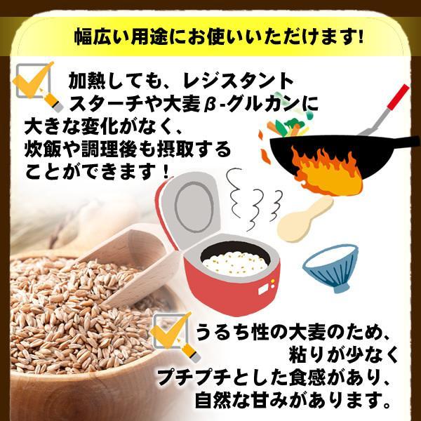 バーリーマックス 300g スーパー大麦 メール便 送料無料 セール特売品|healthy-c|09