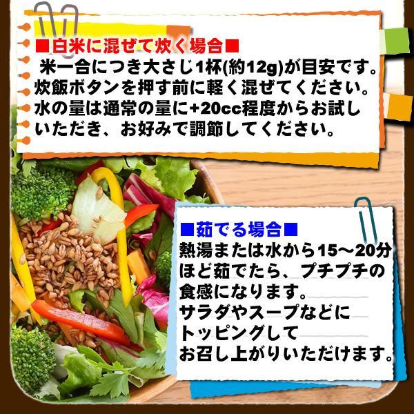 バーリーマックス 300g スーパー大麦 メール便 送料無料 セール特売品|healthy-c|10
