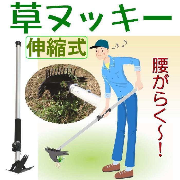 806497 雑草抜き 草ヌッキー 伸縮式
