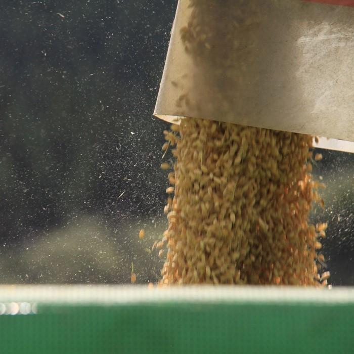 新米 はえぬき 送料無料 お米 お試し米 900g 山形県 令和3年産 精白米 真空パック 1kg以下 ポイント消化 heartlandfarm 12