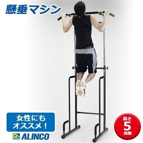 ALINCO/アルインコ 懸垂マシン ぶら下がり健康器 EX900T