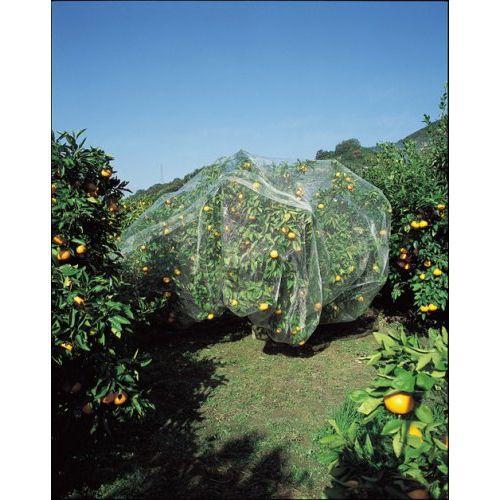 キンボシ 果樹すっぽり防鳥ネット 6×6m hearty-e 03