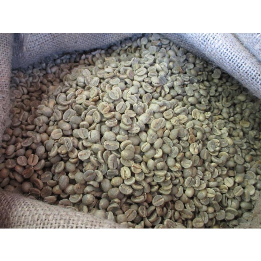 生 豆 コーヒー