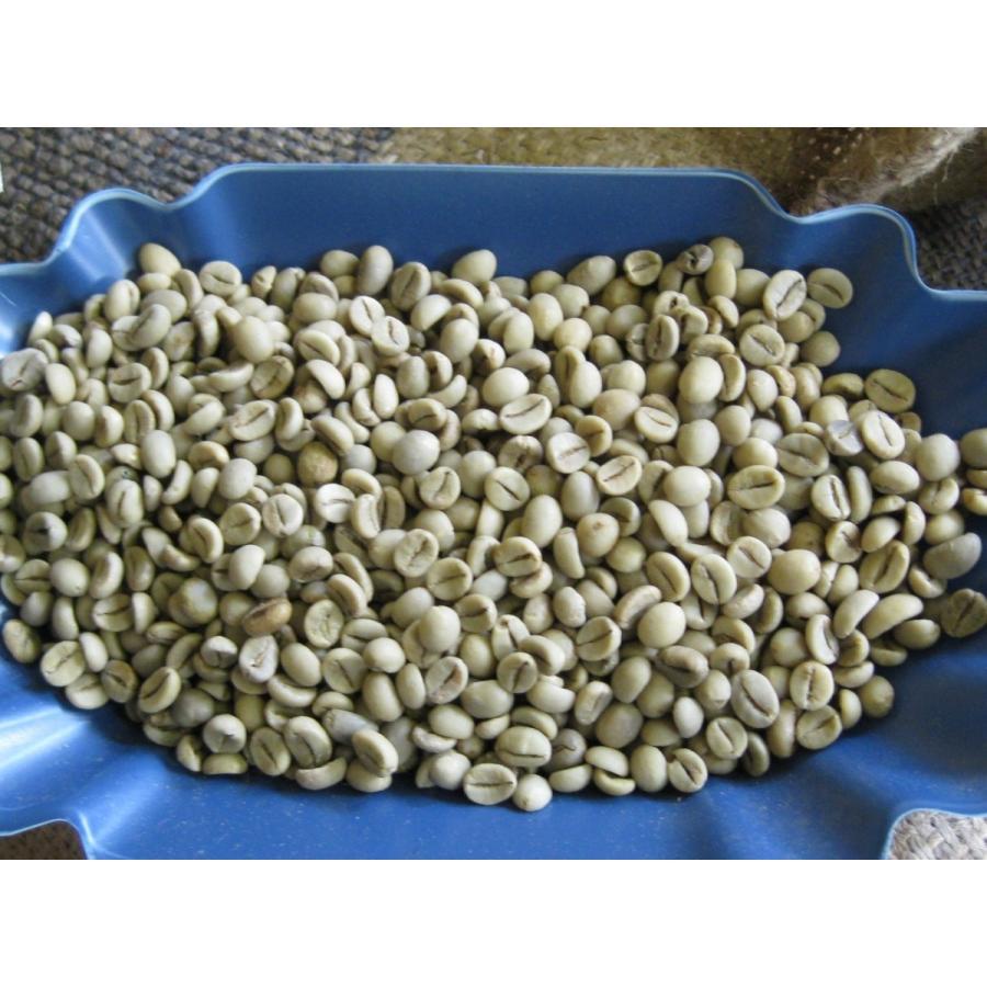 豆 コーヒー 生