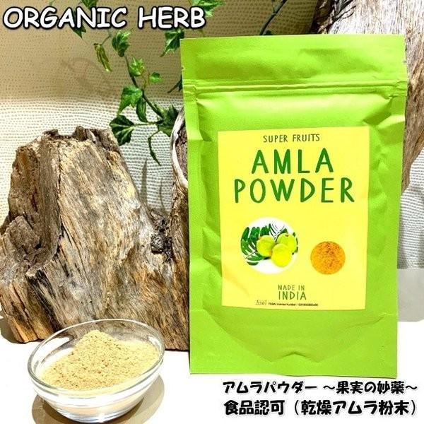食品許可 IPMアムラ 天然ビタミンC サプリ 100g 送料無料 美肌 美容 健康 |henna-aozora