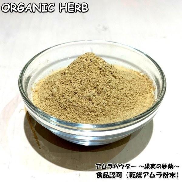 食品許可 IPMアムラ 天然ビタミンC サプリ 100g 送料無料 美肌 美容 健康 |henna-aozora|02