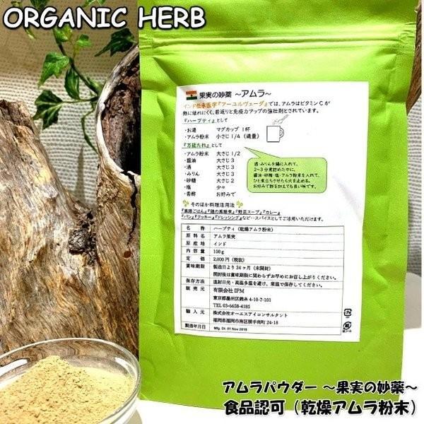 食品許可 IPMアムラ 天然ビタミンC サプリ 100g 送料無料 美肌 美容 健康 |henna-aozora|03