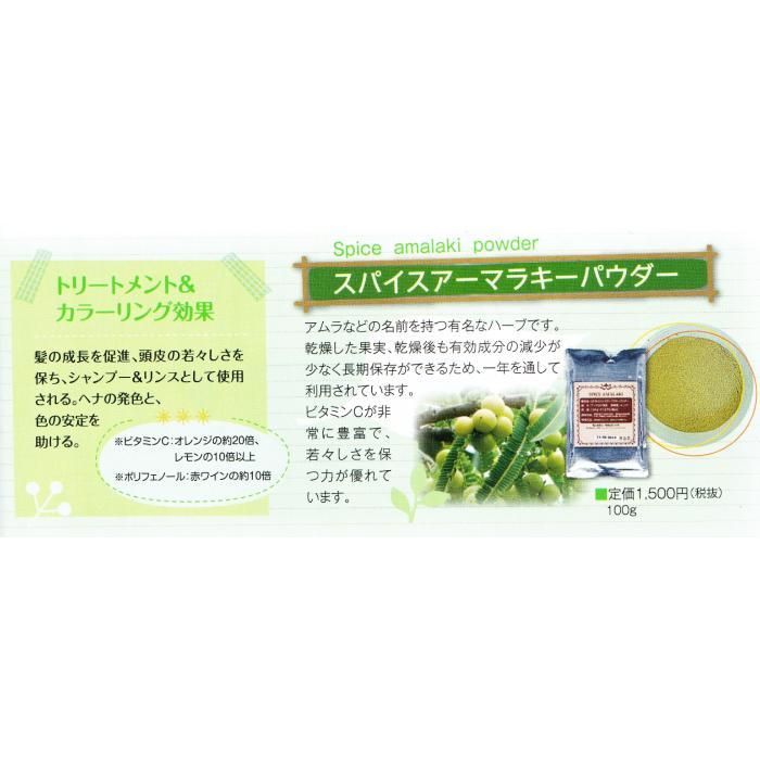 食品許可 IPMアムラ 天然ビタミンC サプリ 100g 送料無料 美肌 美容 健康 |henna-aozora|04