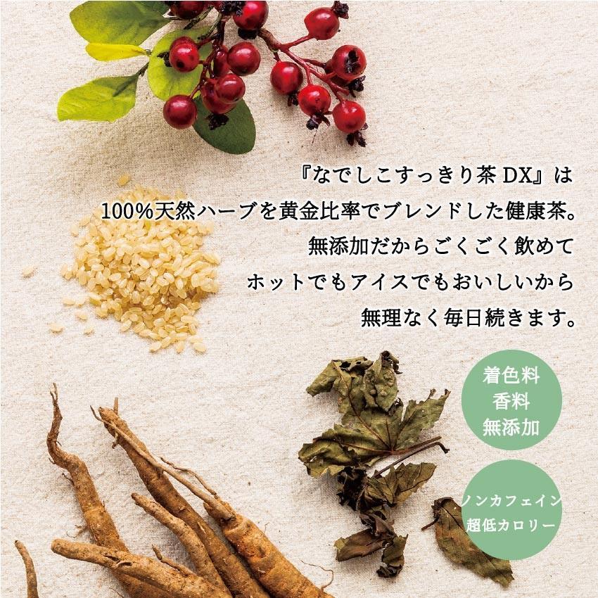 【12時まで当日出荷!】なでしこ すっきり茶DX 1パック 500円OFF  無添加ハーブティーで毎朝すっきり! ノンカフェイン 日本製 送料無料 herb-labo 03