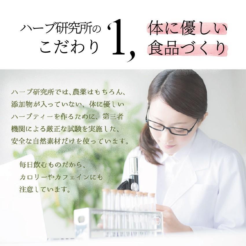 【12時まで当日出荷!】なでしこ すっきり茶DX 1パック 500円OFF  無添加ハーブティーで毎朝すっきり! ノンカフェイン 日本製 送料無料 herb-labo 06