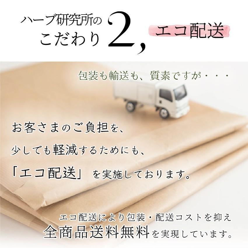 【12時まで当日出荷!】なでしこ すっきり茶DX 1パック 500円OFF  無添加ハーブティーで毎朝すっきり! ノンカフェイン 日本製 送料無料 herb-labo 08